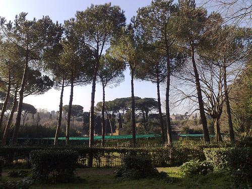 Dónde ver el mejor atardecer en Roma - Colina del Celio, vistas amenizadas con música jazz