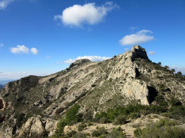 Mejores bosques de la Comunidad Valenciana - Sierra de Maigmó (Alicante)