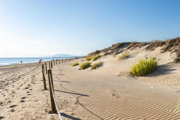 Las playas más bonitas de Valencia - Playa Terranova (Oliva)
