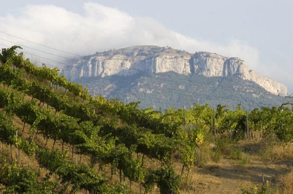 Los mejores parques naturales cerca de Barcelona - Parque de Sant Llorenç d'Amunt y la Mola
