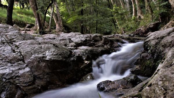 Los mejores parques naturales cerca de Barcelona - Parque Natural del Montseny