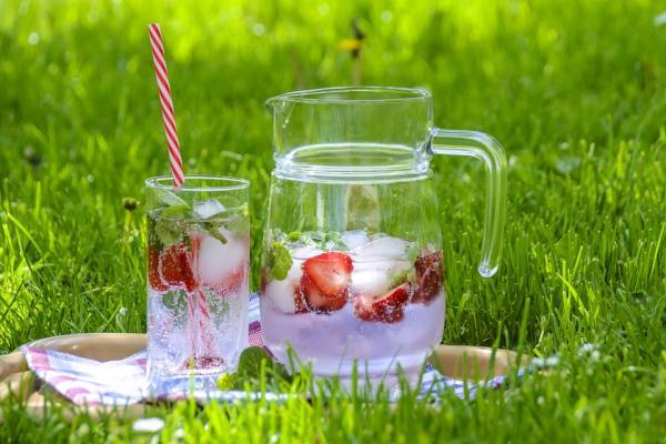Ideas para un picnic saludable - Menú saludable para un picnic: qué tener en cuenta