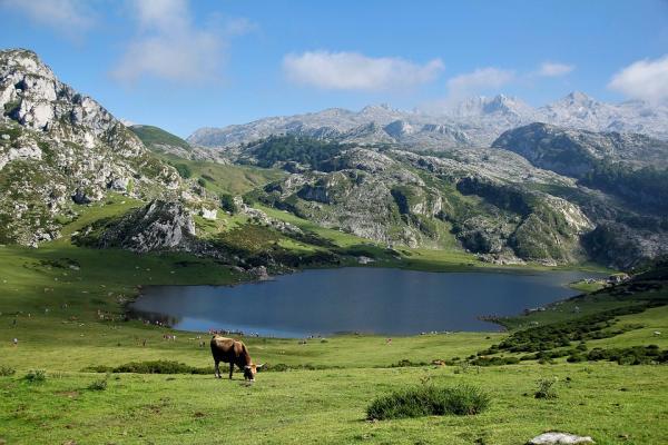 Qué ver en los Picos de Europa - Lagos de Covadonga, uno de los sitios que ver en los Picos de Europa