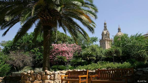 Bosques en Barcelona y alrededores - Bosque de Montjuïc