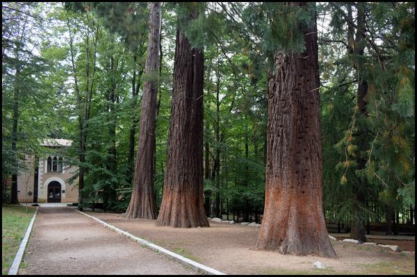 Bosques en Barcelona y alrededores - Can Casades