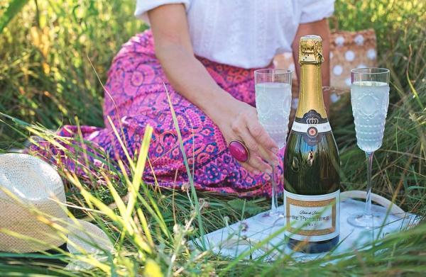 Cómo preparar un picnic romántico - 5 ideas para un picnic romántico