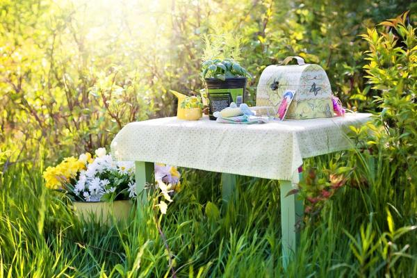 Ideas de comida para un picnic sin nevera