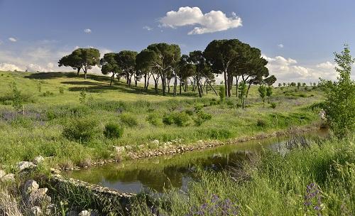 Los mejores parques infantiles en Madrid - Parque Felipe VI