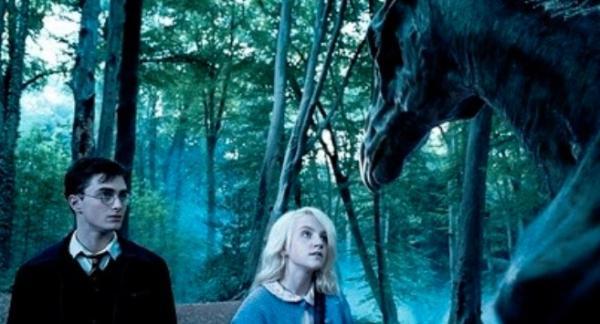 10 fallos en las películas de Harry Potter - Los thestrals y Harry Potter, otro fallo de la película