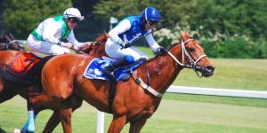 Las mejores carreras de caballos en Madrid