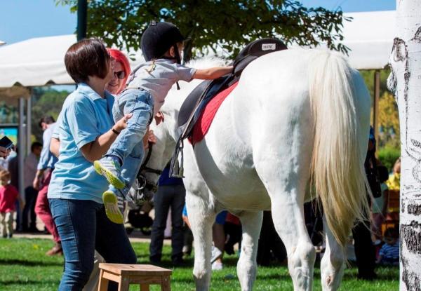 Las mejores carreras de caballos en Madrid - Otras actividades que podrás encontrar en el hipódromo