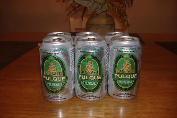 6 bebidas típicas de Mexico - El Pulque, otra de las bebidas típicas mexicanas
