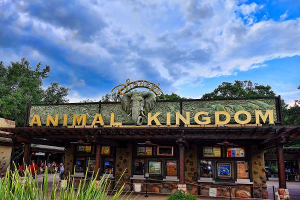 Los mejores parques de Orlando, Florida - Animal Kingdom
