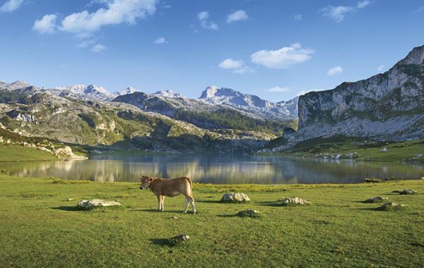 Los mejores parques naturales de España - Parque Nacional de Picos de Europa
