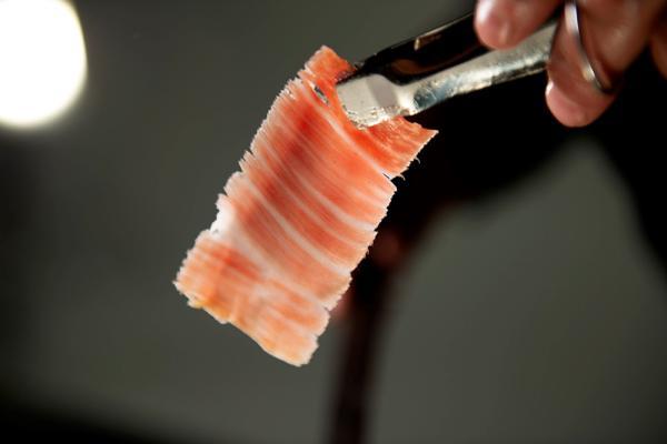 Jamón ibérico, un producto europeo gourmet único en el mundo - El mejor jamón ibérico