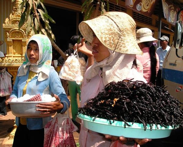 Dónde comer insectos en Tailandia